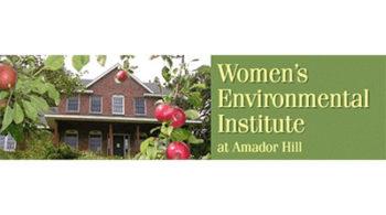 Women's-Environmental-Institute-2019-DIR-Logo